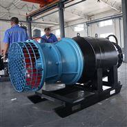 大流量雪橇式潜水轴流泵生产厂家